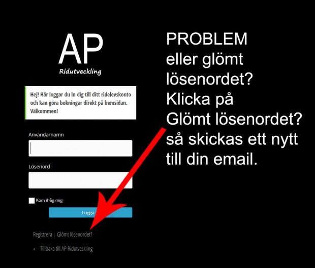 problem_med_losenord